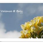 [Bali 2008] 我在峇里島‧發呆