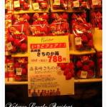 東京日光‧別忘了買草莓