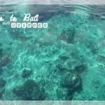 [Bali 2008] 無趣的貝夢島一日遊