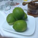 超簡單!絕對不失敗的蜜漬檸檬